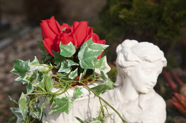 Remember with roses