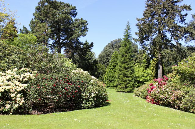 Beautiful landscaped garden, with flower beds, shrub borders, trees, lawn