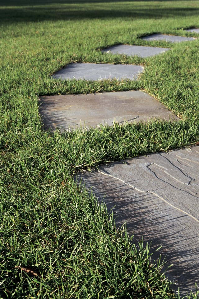 Grass with stepping stones
