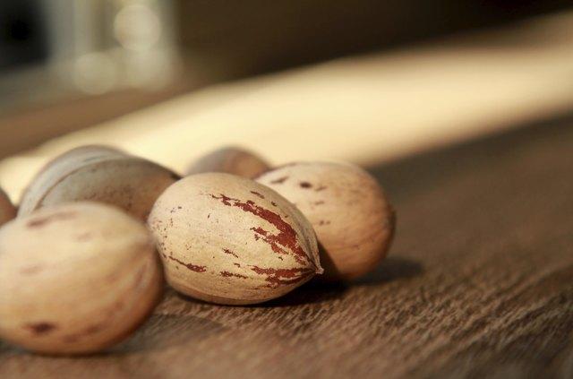 Pecan Nuts close up
