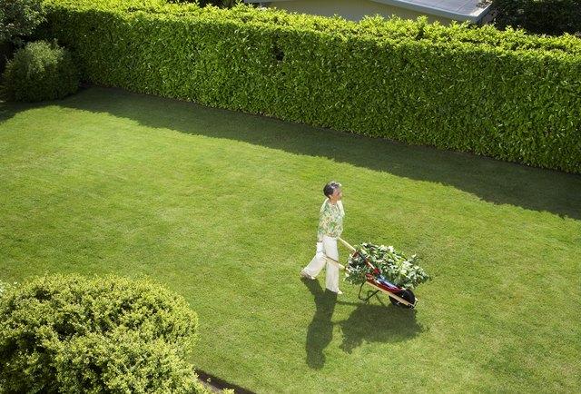 Mature woman doing yard work