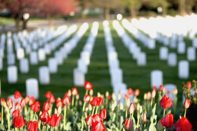 Flowers to plant at the cemetery hunker red tulips at arlington national cemetery arlington va usa mightylinksfo
