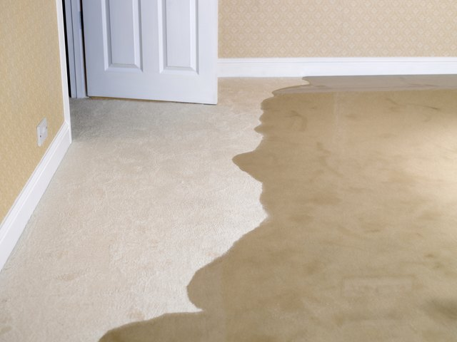 How To Clean Wet Carpets Hunker