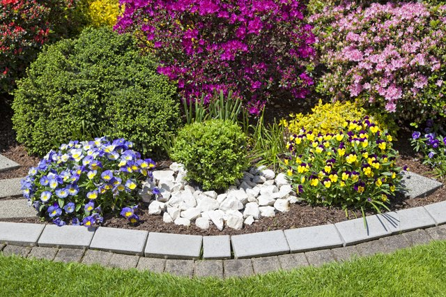 beautiful ornamental garden with blooming flowers