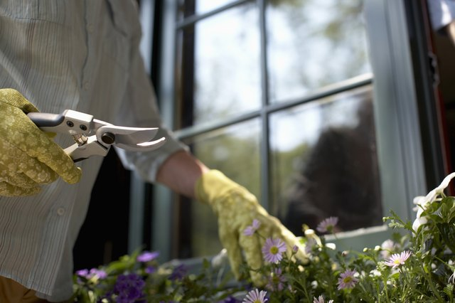 Mature woman working with gardening secateurs, mid section