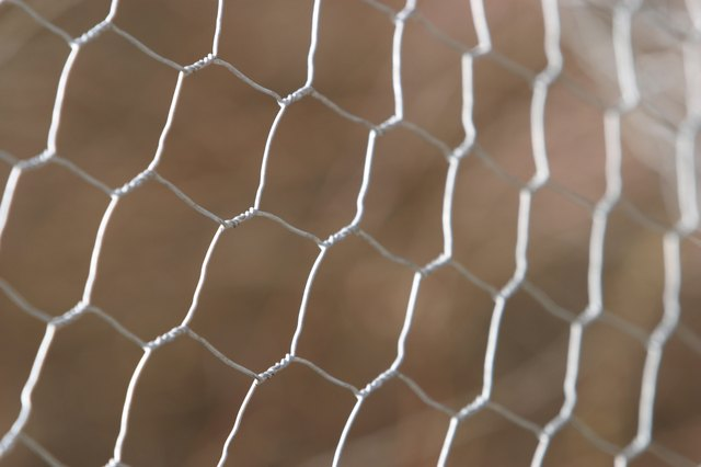 Chicken wire fence
