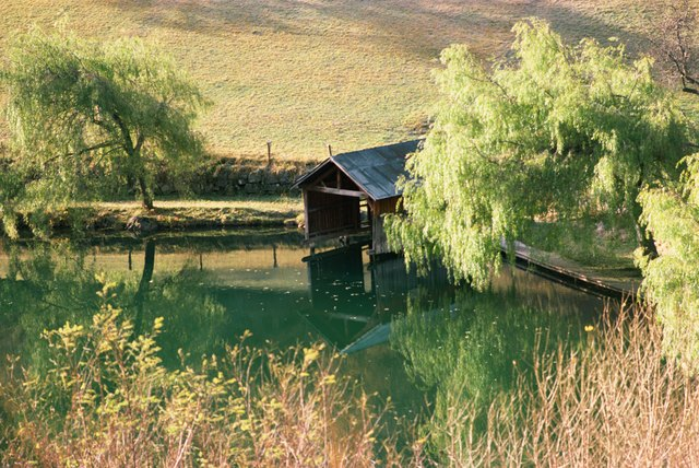 Boathouse by rural pond