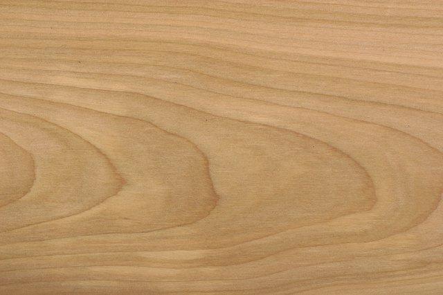 Birch Vs Maple Wood Hunker