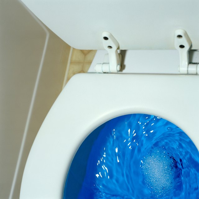 Image result for Blue toilet bowl cleaner in toilet bowl