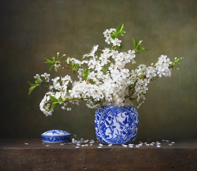 Still life with bouquet of cherry blossoms