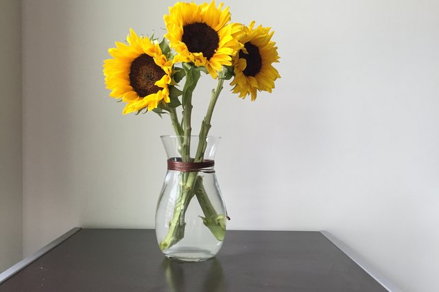How To Care For Cut Sunflowers Hunker
