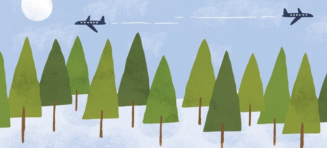 a forest with two airplanes above