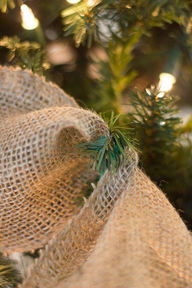 Ribbon tied with tree