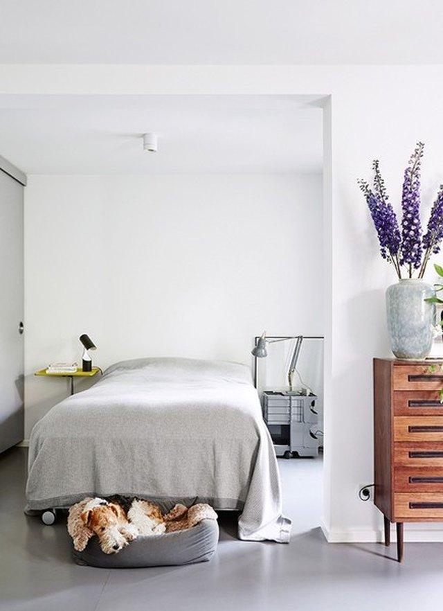 purple fresh flowers in bedroom