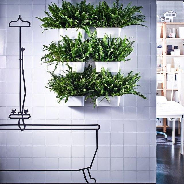 fern plants wall-mounted in bathroom IKEA