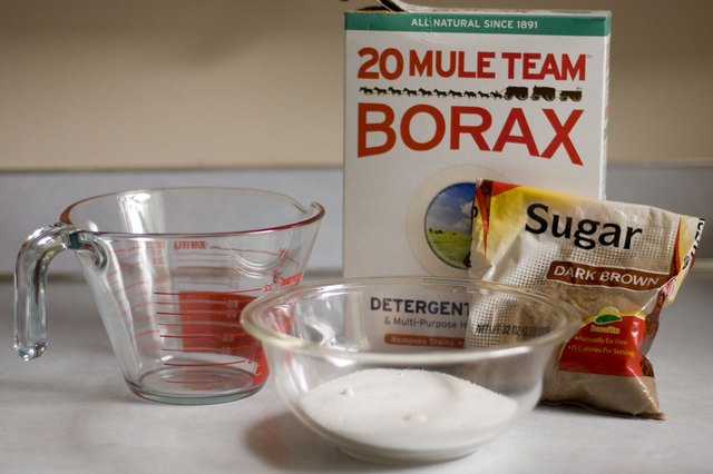 How To Kill Ants With Borax Hunker
