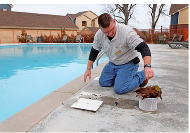 Man cleaning a swimming pool skimmer basket.