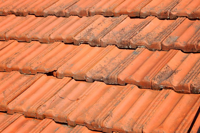 How to Remove Lichen From Roof Shingles – Lichen Removal From Roof Shingles