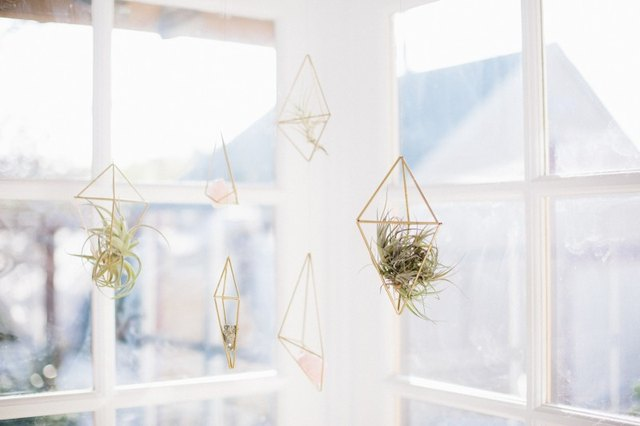 diy hanging air planters