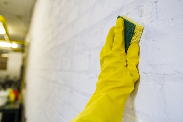 how to clean mould off concrete walls