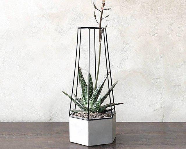 desk planter