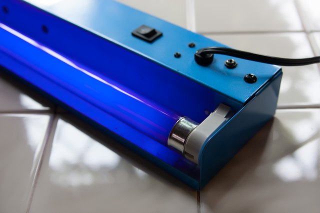 How To Kill Mold Spores With Uv Light Hunker