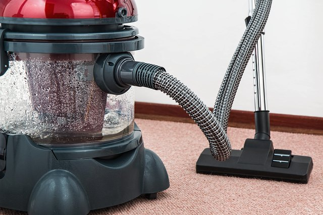 Vacuum and clean carpet.