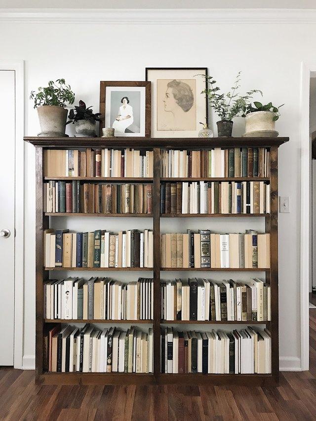book-filled bookcase