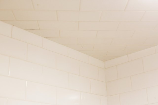 How To Remove Black Mold From Shower Walls Hunker