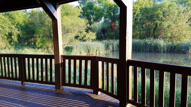 Wood deck overlooking scenic pond.