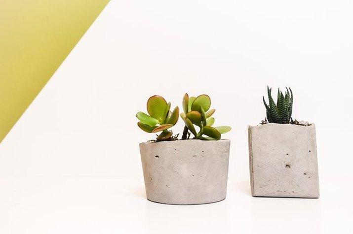 DIY concrete succulent planters perfect for windowsills