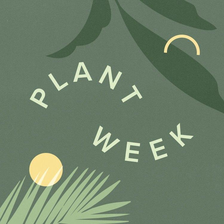 Hunker Plant Week