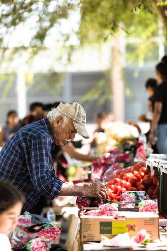 Farmer's Market at Fremont