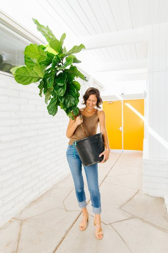 a woman carries a large potted plant through a a hallway with white walls, a stone floor, and yellow doors