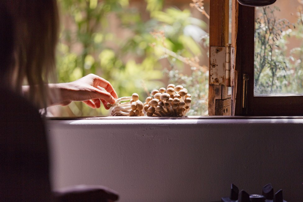 Shot of Colleen in the kitchen choosing fresh mushrooms from the garden